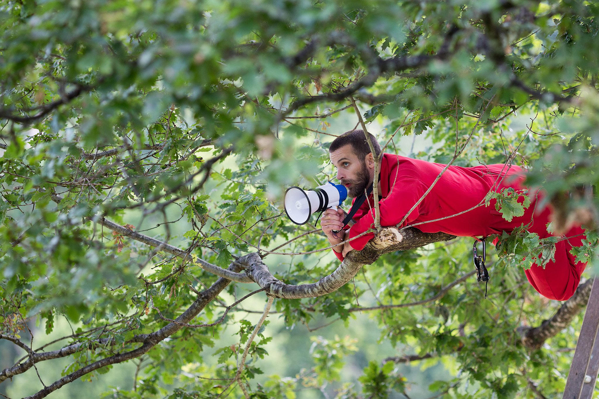 Man in tree with megaphone